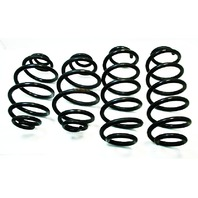 Coil Spring Supsension Set VW Passat 98-05 B5 B5.5 FWD - Genuine Stock