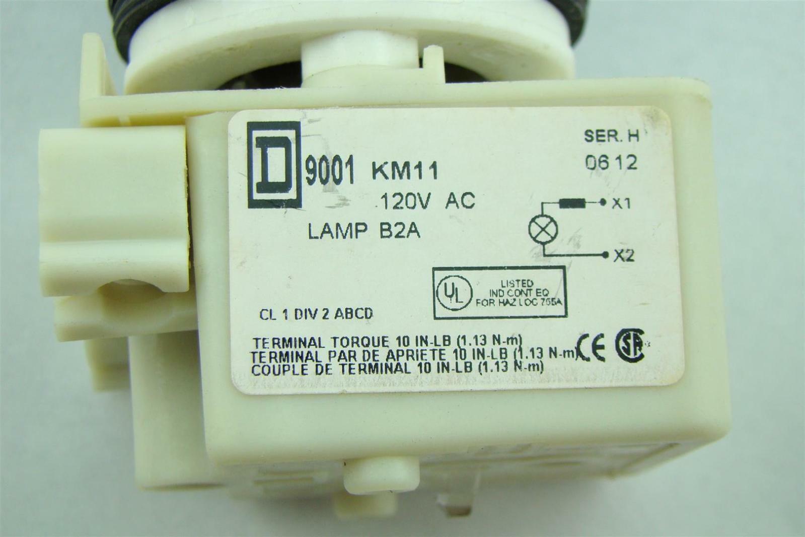 Coast Lamps