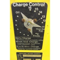 Industrial Energy Inc. S18-725 B3 Batter Charger 36 VDC