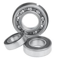 WSM Crankshaft Bearing 30 x 62 x 16 010-221 (s#3-3b)