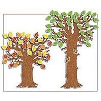 BB SET CLASSROOM TREE