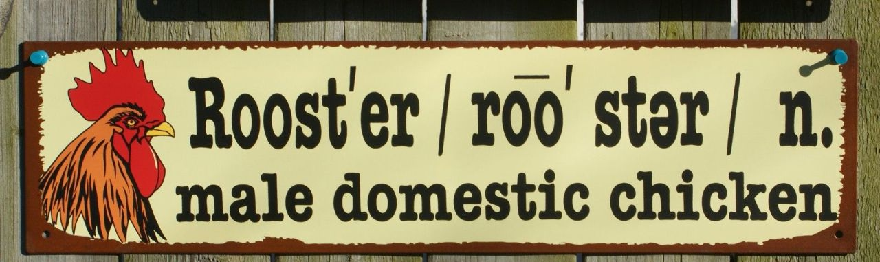 Rooster Tin Metal Sign Male Domestic Chicken Country Kitchen Farm Hen Decor B31