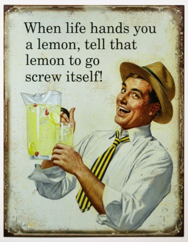 When  Life Hands You a Lemon Tell That Lemon To Go Screw Itself Tin Metal Sign Humor Funny Advice B43