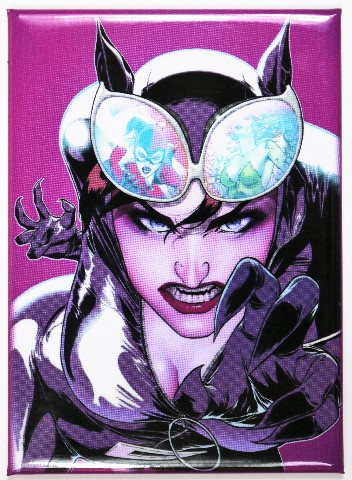 Catwoman FRIDGE MAGNET Comic Book DC Comics Batman Villain F27