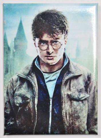 Harry Potter  FRIDGE MAGNET Deathly Hollows Wizard Muggle Fantastic Beast G19