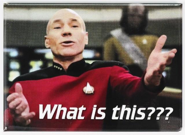 Star Trek The Next Generation FRIDGE MAGNET Captain Jean Luc Picard What is This? Meme