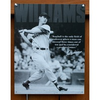Ted Williams Tin Sign Baseball HOF MLB World Series Boston Red Sox E6