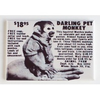 Darling Pet Monkey comic book magazine ad FRIDGE MAGNET retro reproduction D2