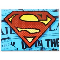 Superman Logo FRIDGE MAGNET DC Comics Justice League Clark Kent F22