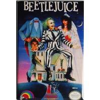 Nintendo Beetlejuice FRIDGE MAGNET Video Game Box Classic NES