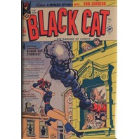 Black Cat Comic Book #26 Cover FRIDGE MAGNET Harvey Comics