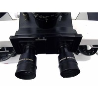 Leitz Wetzlar Laborlux 12 Comparator Comparison DUAL Observation MICROSCOPE