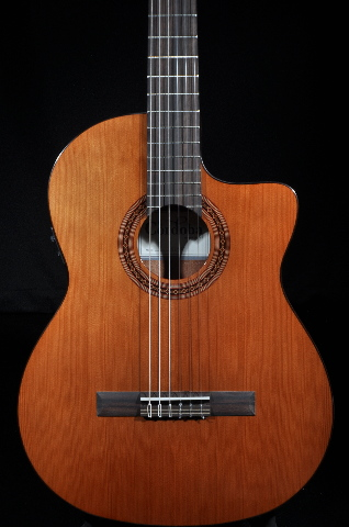 Cordoba C5 CET Thin Body Acoustic/Electric Guitar  New