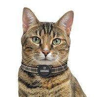 SmartyKat Dog Tag Activity Monitor, Black