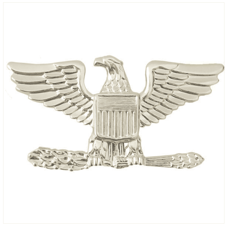 Vanguard Air Force Rank Insignia Colonel Small Left Side