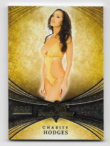 Charity Hodges 2013 Benchwarmer Signature Series Gold Edition /24
