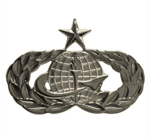 Vanguard AIR FORCE BADGE: FORCE SUPPORT: SENIOR - REGULATION SIZE