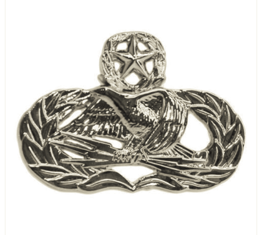 Vanguard AIR FORCE BADGE: GROUND RADAR AIRFIELD SYSTEMS MASTER - MIDSIZE