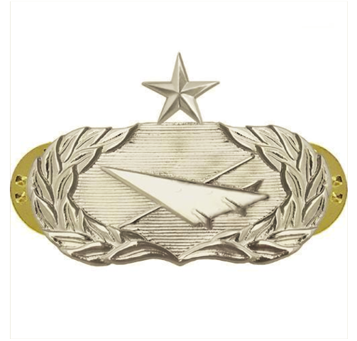 Vanguard AIR FORCE BADGE: HISTORIAN: SENIOR - MIDSIZE