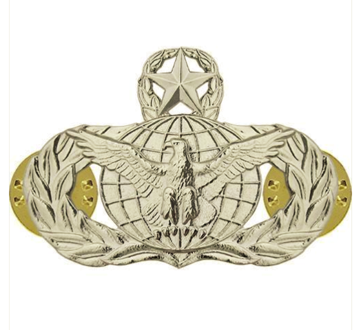 Vanguard AIR FORCE BADGE: FORCE PROTECTION: MASTER - MIDSIZE