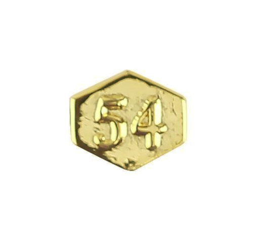 Vanguard ARMY IDENTIFICATION BADGE ATTACHMENT: DIRECTOR 54 - GOLD MIRROR FINISH