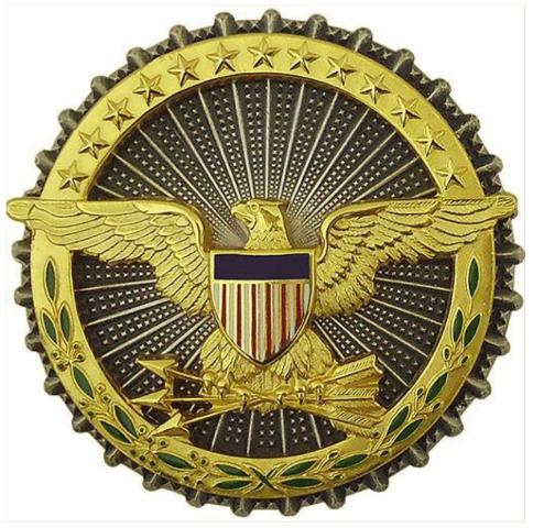 Vanguard ARMY IDENTIFICATION BADGE: SECRETARY OF DEFENSE - OXIDIZED