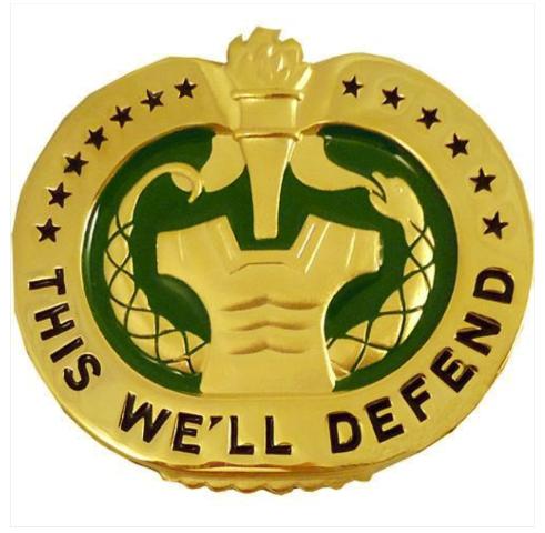 Vanguard ARMY IDENTIFICATION BADGE: DRILL SERGEANT