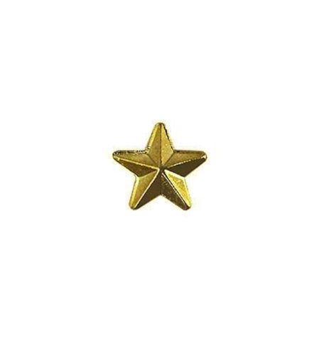 Vanguard ARMY IDENTIFICATION BADGE GOLD STAR FOR RECRUITER - HARD CORPS METAL