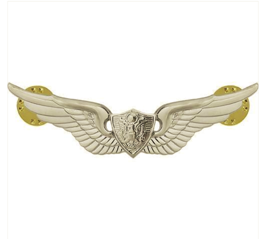 Vanguard ARMY BADGE: AIRCRAFT CREWMAN: AIRCREW - REGULATION SIZE, MIRROR FINISH