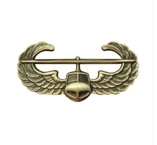 Vanguard ARMY BADGE: AIR ASSAULT - SILVER OXIDIZED