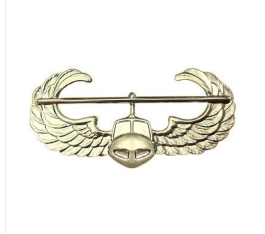 Vanguard ARMY BADGE: AIR ASSAULT - MIRROR FINISH