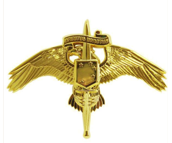 Vanguard MARINE CORP MINIATURE BADGE MARINE CORP FORCES SPECIAL OP COMMAND