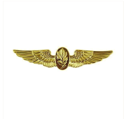 Vanguard NAVY BADGE: AVIATION PHYSIOLOGIST - REGULATION SIZE