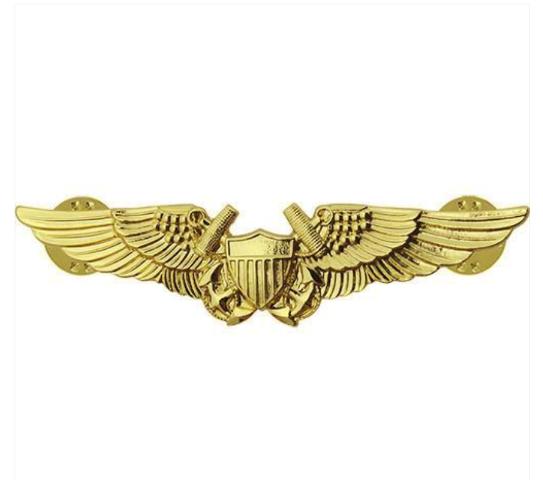 Vanguard NAVY BADGE: NAVY FLIGHT OFFICER - REGULATION SIZE