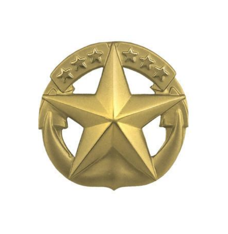 Vanguard NAVY BADGE: COMMAND AT SEA - MINIATURE, GOLD MATTE FINISH