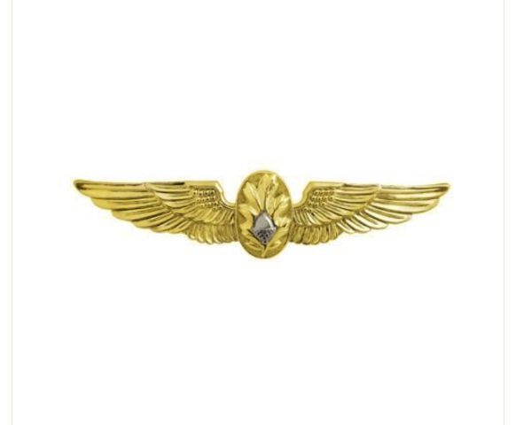 Vanguard NAVY BADGE: FLIGHT SURGEON - MINIATURE, MIRROR FINISH