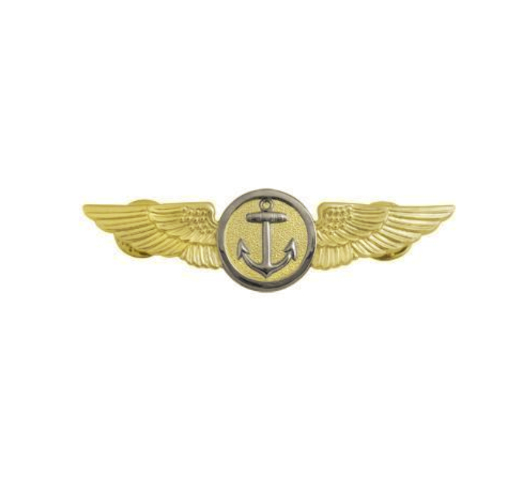 Vanguard NAVY BADGE NAVAL AVIATION OBSERVER FLIGHT METEOROLOGIST MIRROR
