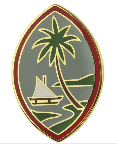 Vanguard ARMY COMBAT SERVICE IDENTIFICATION BADGE GUAM ARMY NATIONAL GUARD