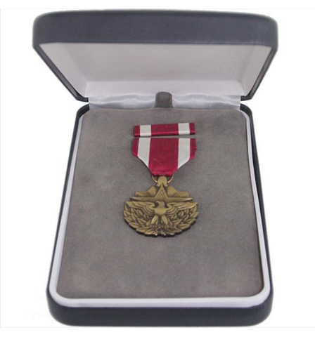 Vanguard MEDAL PRESENTATION SET: MERITORIOUS SERVICE