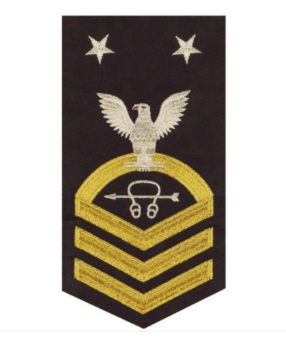 Vanguard NAVY E9 MALE RATING BADGE: SONAR TECHNICIAN - SEAWORTHY GOLD ON BLUE