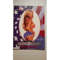 Coco Johnsen 2002 Bench Warmer All-American Chromium #4 Playboy Playmates