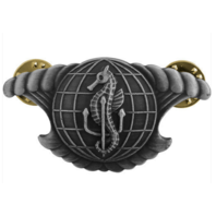 Vanguard NAVY BADGE: INTEGRATED UNDERSEA'S SURVEILLANCE SYSTEM ENLISTED