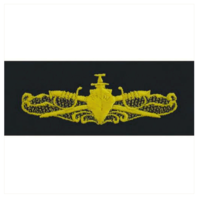 Vanguard NAVY EMBROIDERED BADGE: SURFACE WARFARE OFFICER - COVERALL