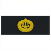 Vanguard NAVY EMBROIDERED BADGE: COMMAND ASHORE - EMBROIDERED ON COVERALL