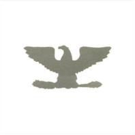 Vanguard NAVY CONSTRUCTION HAT DECAL: CAPTAIN