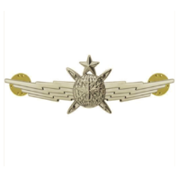 Vanguard AIR FORCE BADGE: SENIOR CYBERSPACE OPERATOR: REGULATION SIZE
