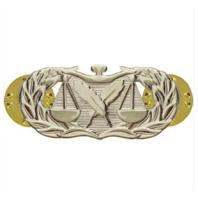 Vanguard AIR FORCE BADGE: PARALEGAL - MIDSIZE