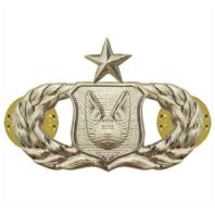 Vanguard AIR FORCE BADGE: OPERATIONS SUPPORT: SENIOR - MIDSIZE