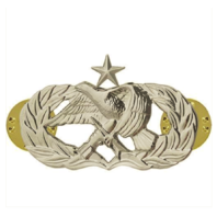 Vanguard AIR FORCE BADGE: MAINTENANCE: SENIOR - MIDSIZE