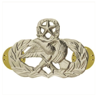 Vanguard AIR FORCE BADGE: MAINTENANCE: MASTER - MIDSIZE